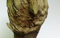faune-du-jardin-50-cm