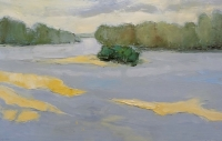 loire-a-checy-30x50-2015